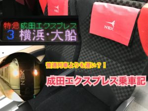 成田エクスプレス横浜方面はおトクなのに乗車率低迷!成田エクスプレス乗車記【雪国周遊旅】