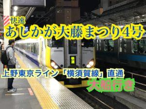 あしかが大藤まつり4号大船行きに乗ってきました!上野東京ライン経由の臨時快速!【GW3大回り】