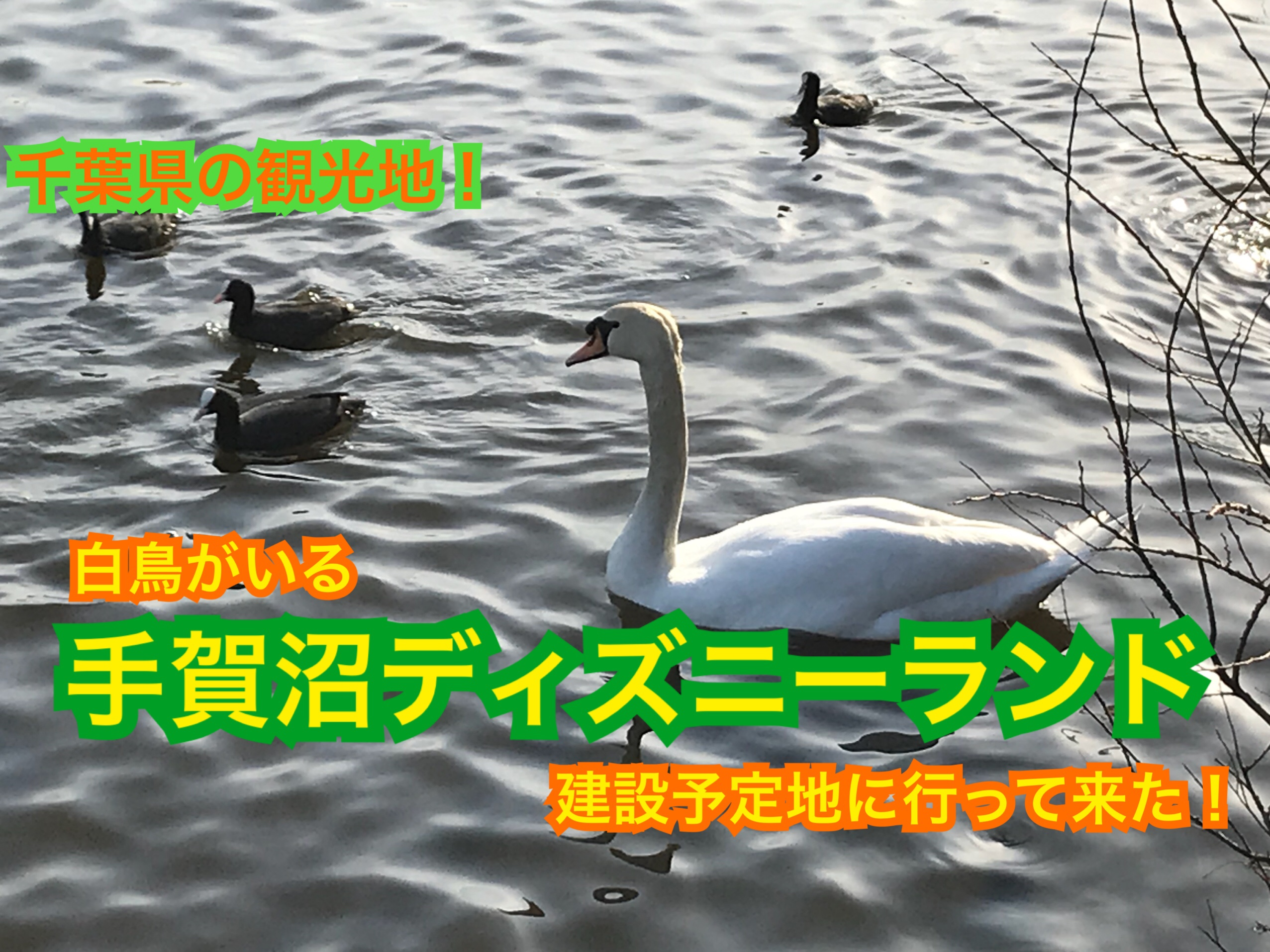 手賀沼ディズニーランド予定地?!千葉県の観光地、手賀沼に行って来た!【関東めぐり千葉編】