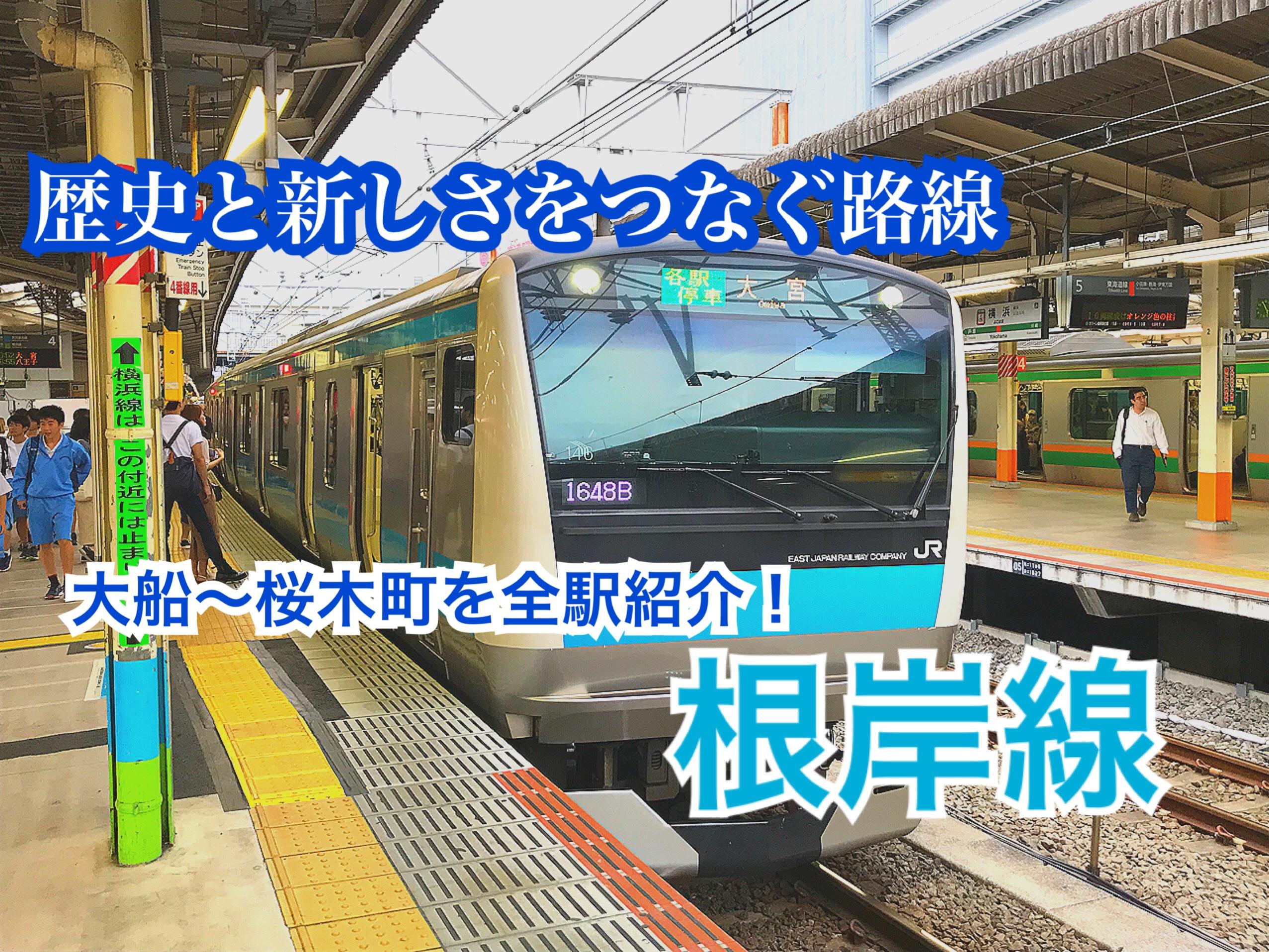 根岸線の駅を端から紹介!トンネルが多いのは〇〇だから!【神奈川東京201906】