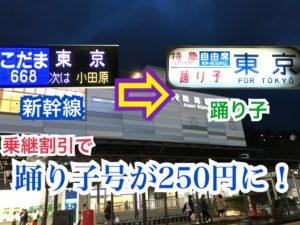 【乗継割引】おトク!新幹線と特急の乗継割引で踊り子号が250円に!【関東めぐり埼玉・静岡編】