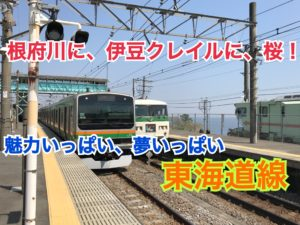 【東海道線】根府川に、伊豆クレイル!改めて東海道線をご紹介!【関東めぐり静岡編】