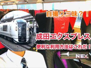 【成田エクスプレス】ガラガラの成田エクスプレスは新幹線乗換には便利!