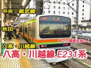 【八高線】19年前に作られた八高線の新型車両?!【関東めぐり東京編】