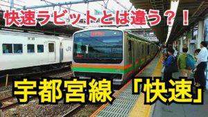宇都宮線 快速ラビットと快速は違う?宇都宮線の複雑な優等列車をご紹介!【気まぐれ大回り旅】