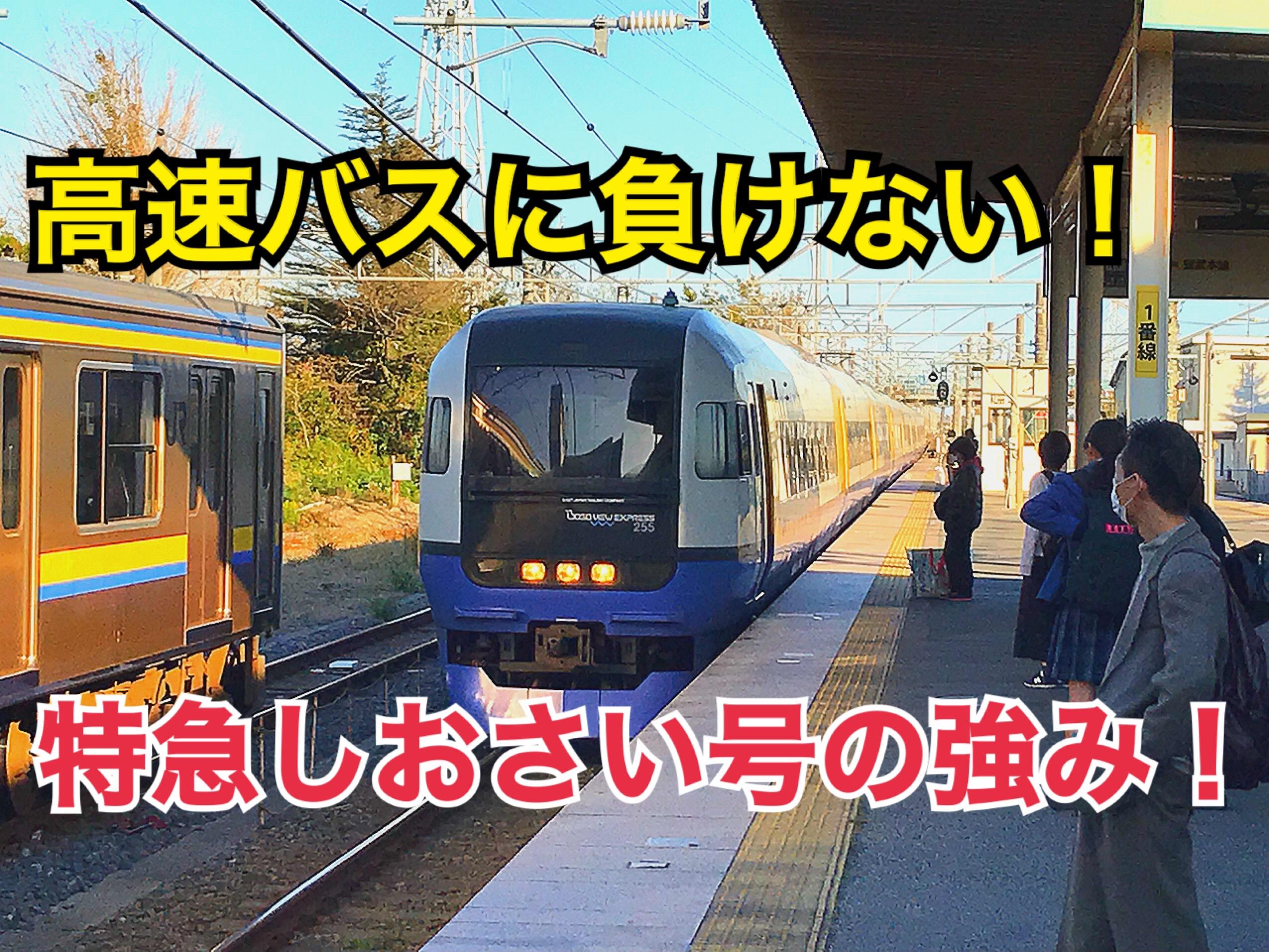 総武本線特急しおさい号に乗車!高速バスとの競合に強い理由はこれだ!【西東京千葉】