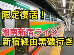 1年に1度だけ復活!湘南新宿ライン黒磯行き!まるで夜行列車のような雰囲気のグリーン車で一路黒磯へ!【元旦の旅】