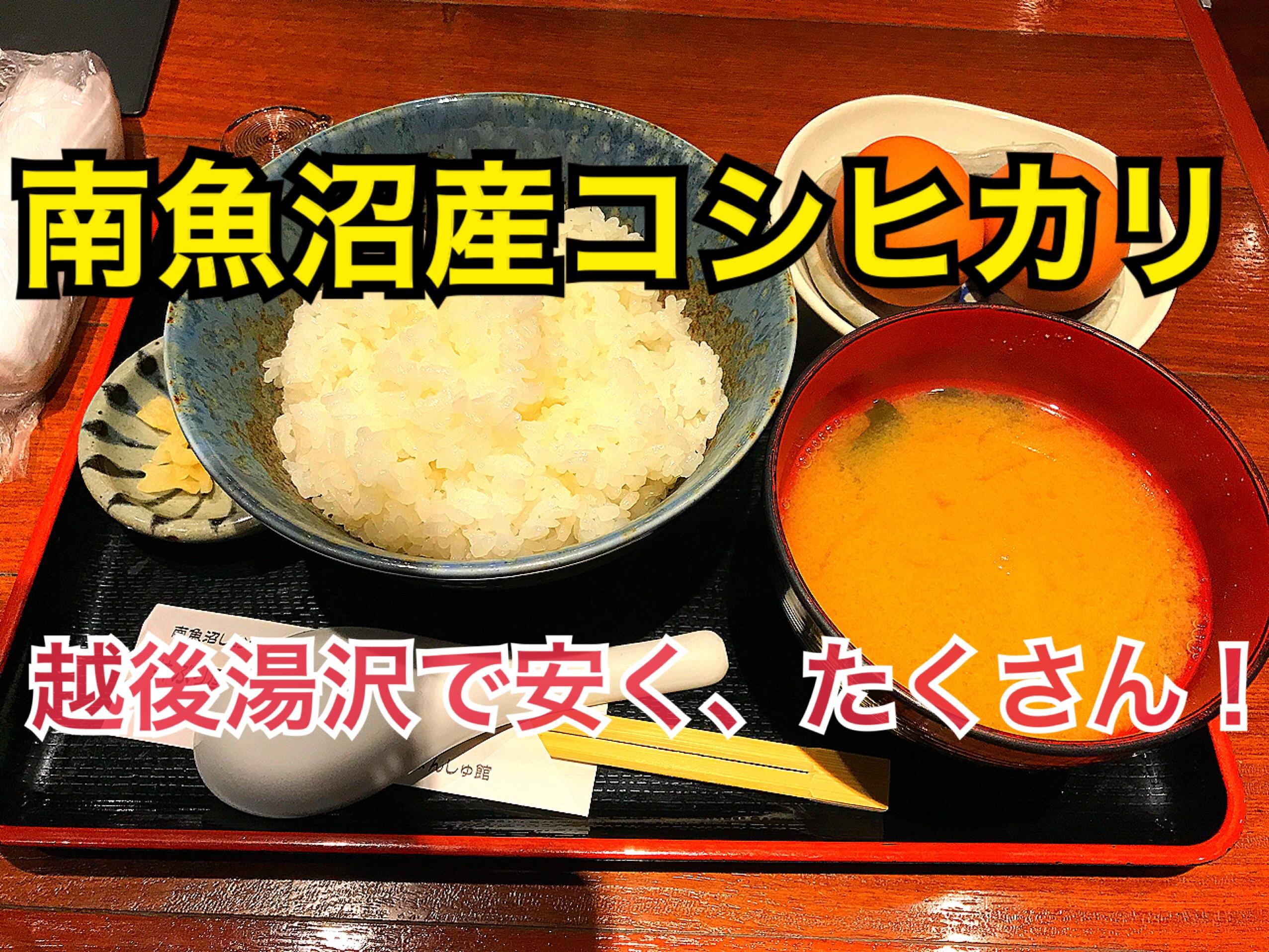 越後湯沢駅で南魚沼産コシヒカリをお腹いっぱい!オススメのお店を紹介!【日帰り新潟ツアー】