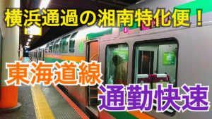 横浜通過で湘南特化!東海道線の通勤快速に乗って見た!【日帰り新潟ツアー】