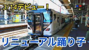 カッコよくなった踊り子号!リニューアル踊り子E257系に乗ってみた!