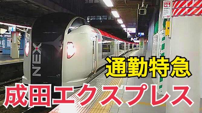 成田エクスプレスは通勤利用が便利!格安で成田エクスプレスを利用しよう!【そうくんの日常】