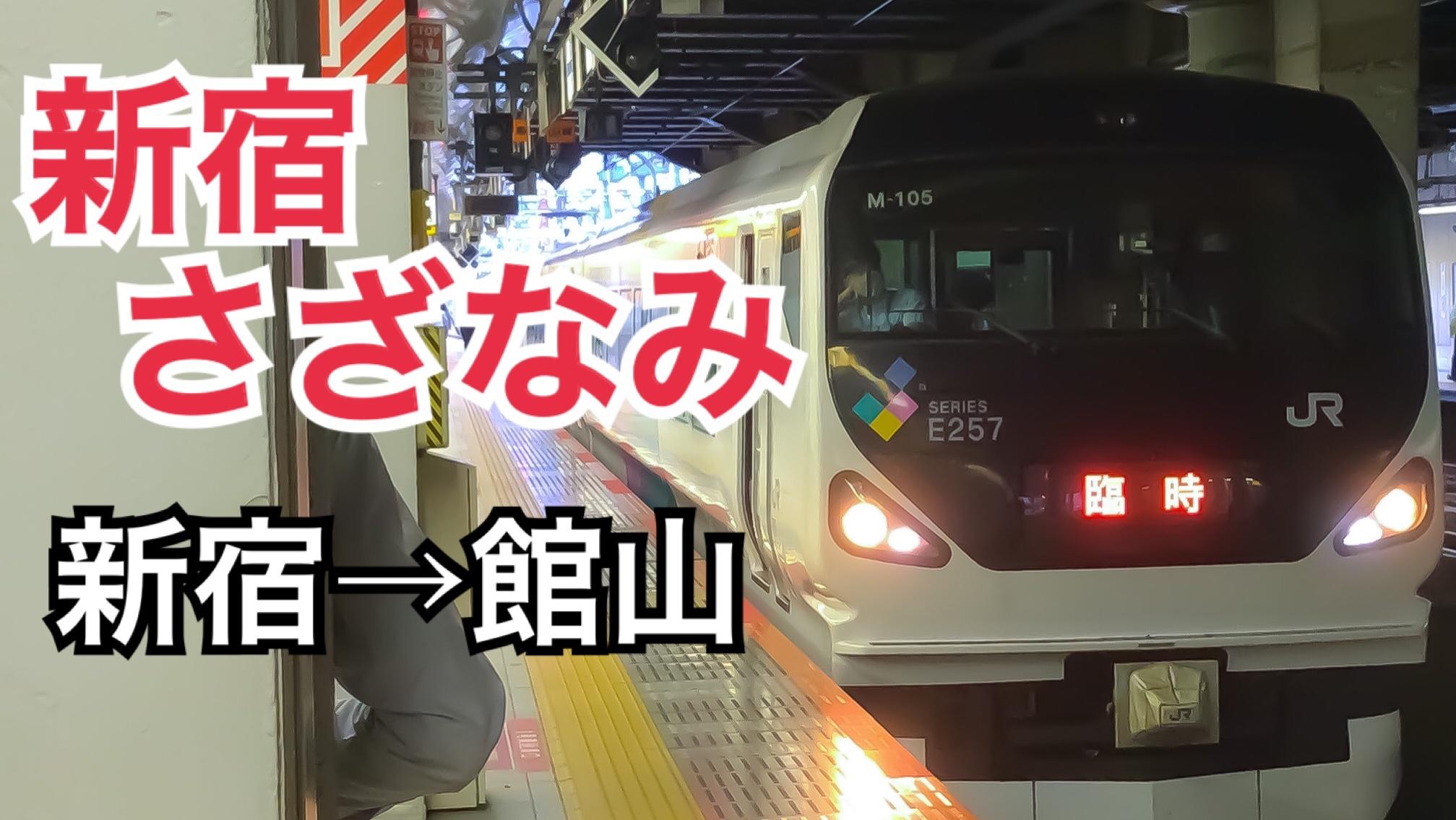 E257系9両で運転!新宿さざなみ号に乗車!指定席はガラガラ!?【新宿房総1周大回り】