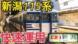 JR東日本最後の115系!新潟115系の快速運用乗車記【北陸プチ旅行】