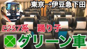 新たな踊り子号!E257系踊り子号のグリーン車に乗車!観光特急らしい雰囲気!美しい車窓が楽しめる!【関東満喫の旅】