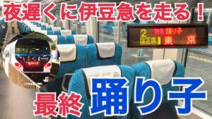 夜に伊豆急を走る踊り子号!最終の特急踊り子58号乗車記 【関東満喫の旅】