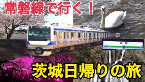 常磐線で行く!茨城日帰りの旅!日帰りでも魅力いっぱいの茨城県を観光!【茨城魅力発見の旅】