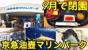 神奈川の水族館!9月に閉館、京急油壷マリンパークに行ってきた!何か見どころはあるの?【三浦半島日帰りの旅】